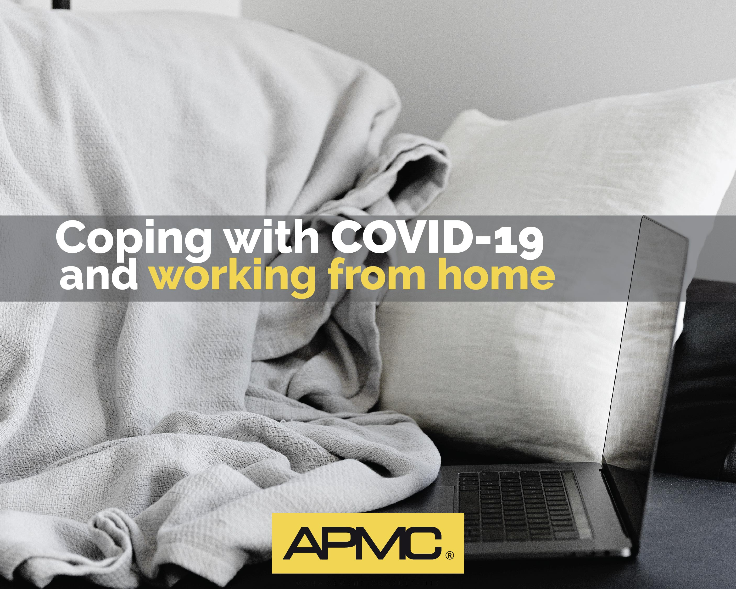 Coping with COVID-19 and Working From Home